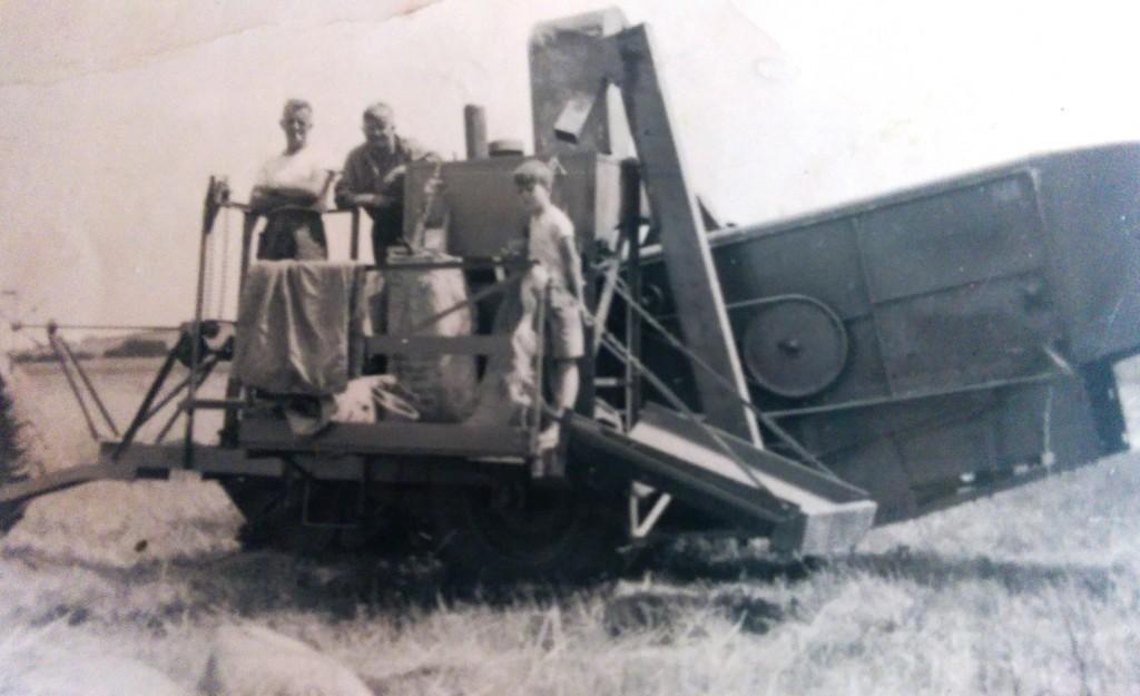 Dorset Farm 1950's
