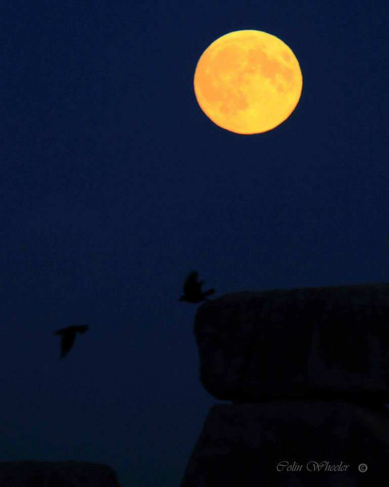 Moonrise and crows at Stonehenge Amesbury Wiltshire