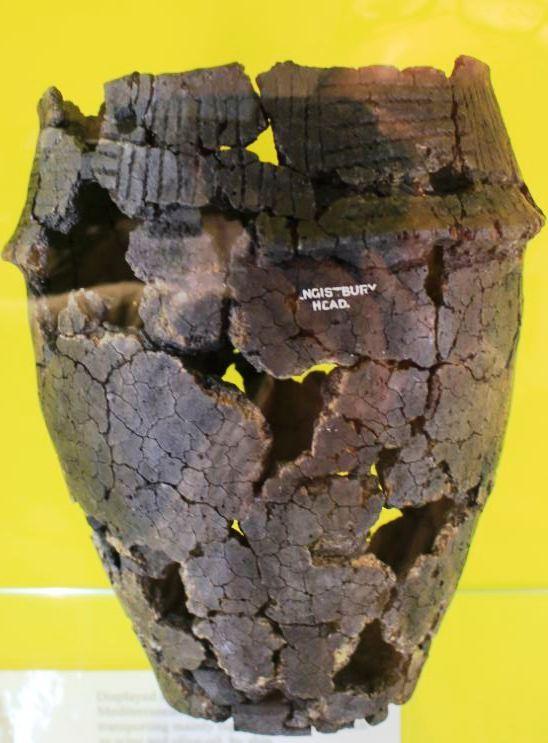 Hengistbury Head Bronze Age Cremation Urn