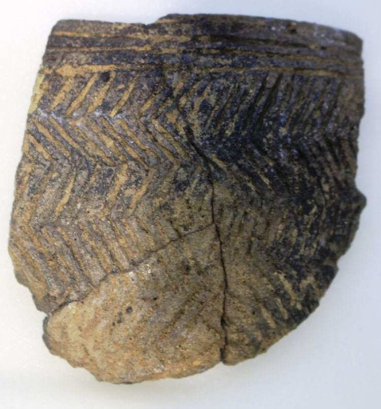 Hengistbury Head Grooved Ware Pottery
