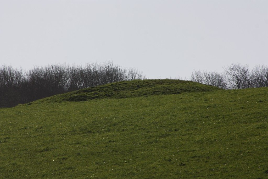 Broad Stone Stone Circle Dorset